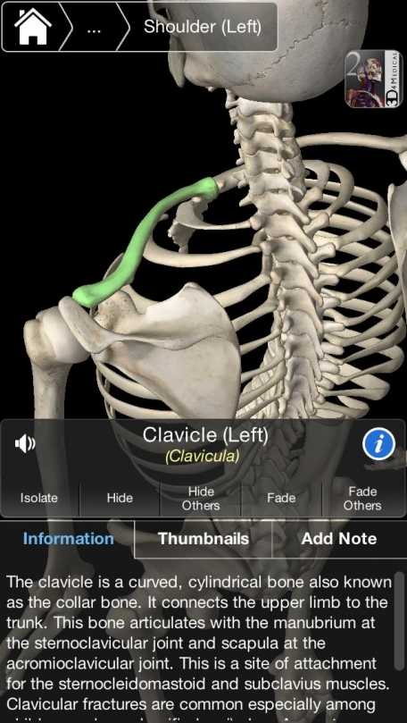 Essential Skeleton 3 Medical App Review (iOS, Free) for July 2018 ...