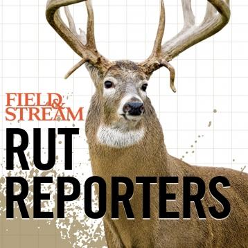 Field & Stream Rut Reporters