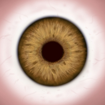 1,010+ Eye Tricks