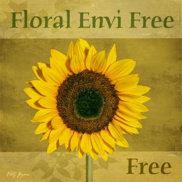 Floral Envi Free