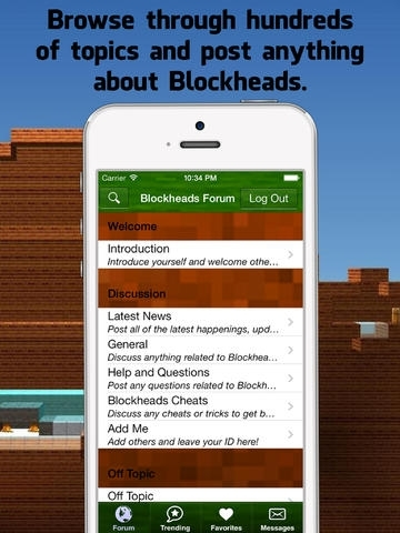 how to use blockheads server app