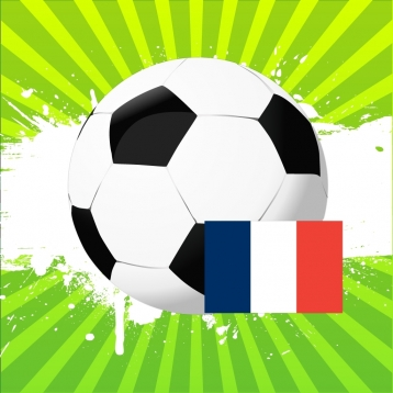 French Football 2012/13