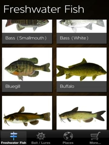 Freshwater Fishing Spots & Lures