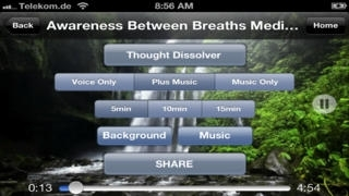 Guided Meditation Techniques: 20+ Meditations for the beginner to advanced meditator
