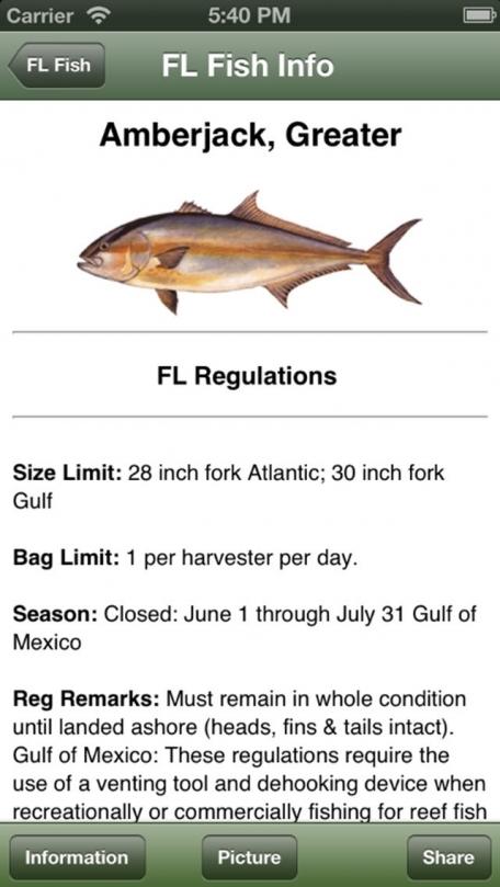 Gulf Saltwater Fishing Companion