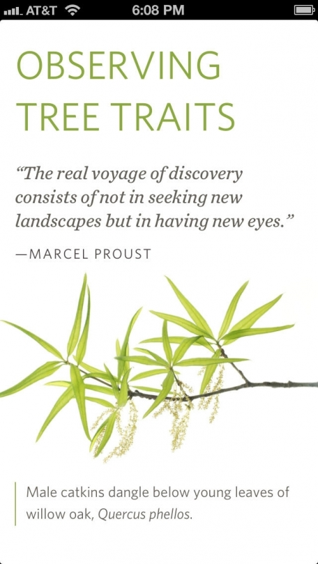 Seeing Trees: Discover the Extraordinary Secrets of Everyday Trees by Nancy Ross Hugo, photography by Robert Llewellyn - Official Book, Inkling Interactive Edition