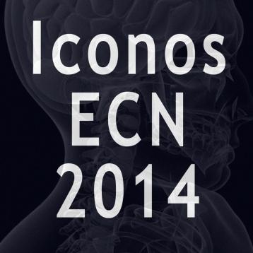 Iconos aux ECN