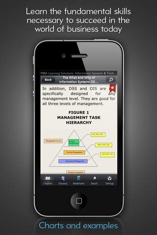 Information Systems & IT for Managers - MBA Learning Solutions for iPhone