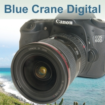 Introduction to the Canon 60D : Basic Controls