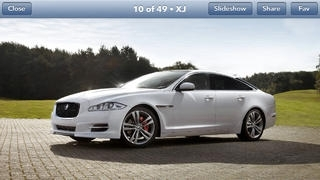 Jaguar Collection