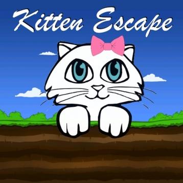 Kitten Escape!
