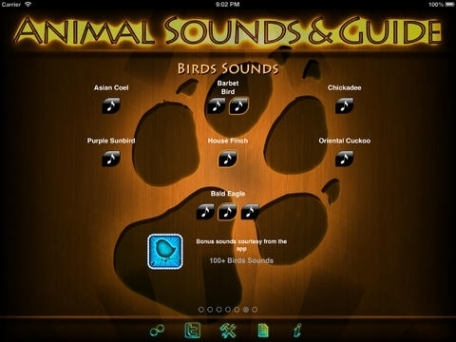 100+ Animal Sounds & Guide Catalog