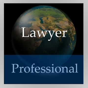 Lawyer Handbook (Professional Edition)