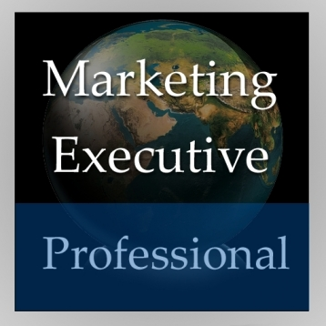 Marketing Executive (Professional Edition)