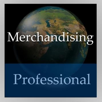Merchandising Handbook (Professional Edition)