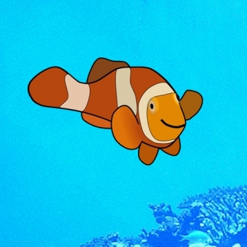 Mr Clownfish and his tropical friends.