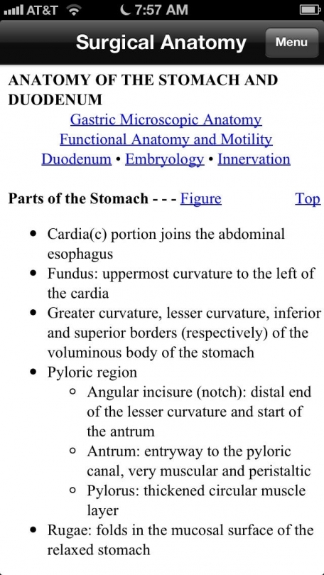Netter's Surgical Anatomy Review P.R.N.