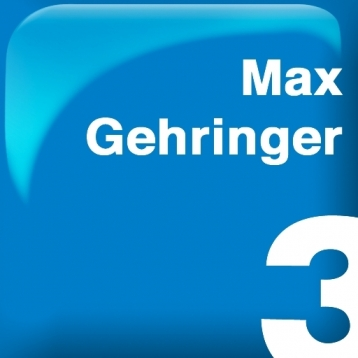 O SUCESSO PASSO A PASSO - Max Gehringer