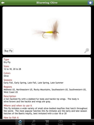 Orvis Fly Fishing – The Ultimate Fly-Fishing Guide