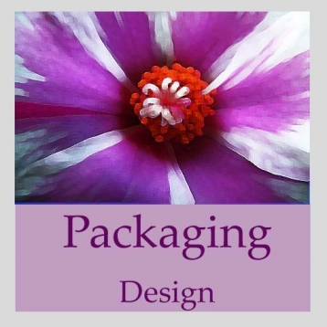 Packaging Design Handbook (Professional Edition)
