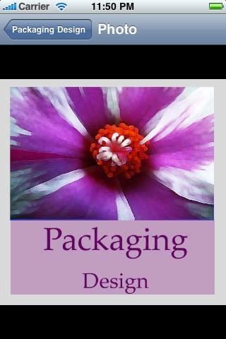Packaging Design Handbook (Professional Edition)