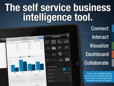 ReportPlus: Mobile Business Intelligence Dashboards