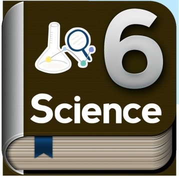 Science 6 Study Guide by Top Student