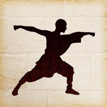 Shaolin Da-hong Boxing