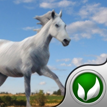 Sky Horse - Jumper game for people who love horses