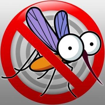 Slap Mosquito free