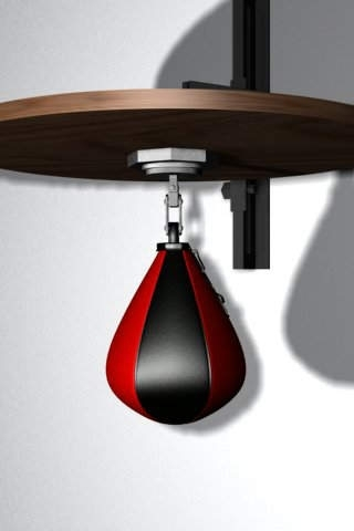 Speed Bag (Punch it!)