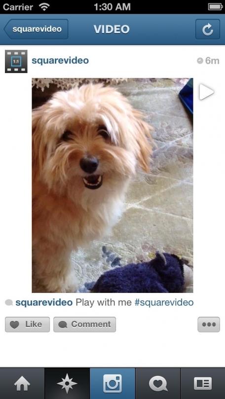 Square Video for Instagram