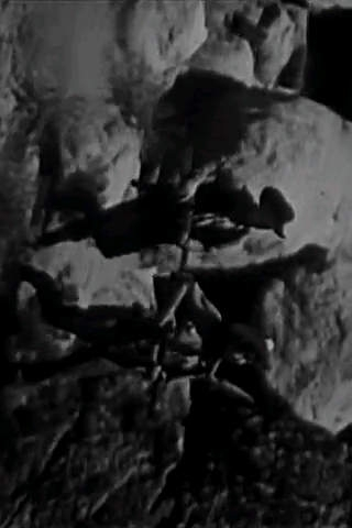 """The Cisco Kid"" Confession for Money - Films4Phones"