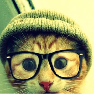 Top Funny Pics!