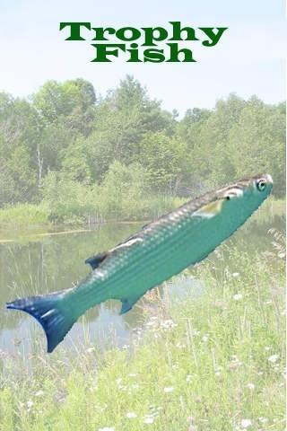 Trophy Fish - The fun fishing game for bored fishermen
