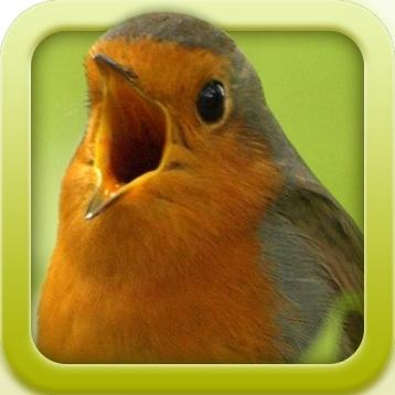 Vogelstimmen-Trainer (Nature Lexicon)