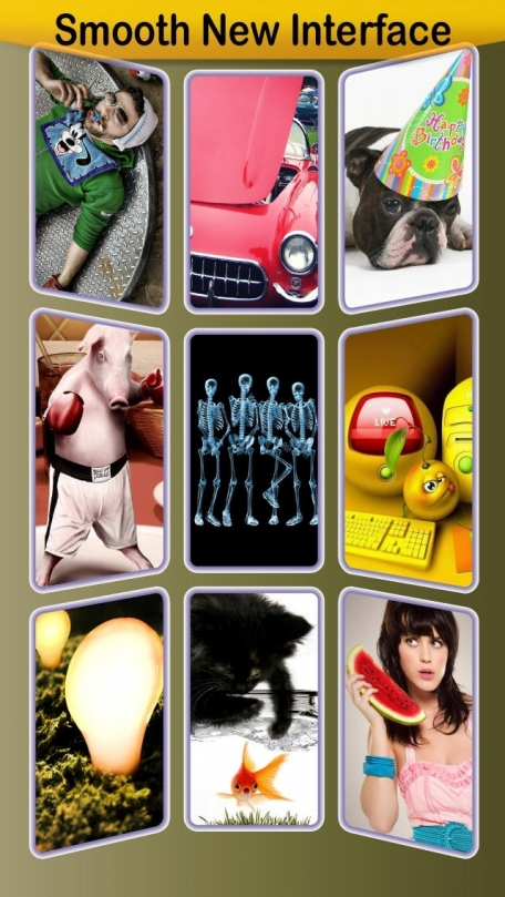 1,000+ Funny Backgrounds