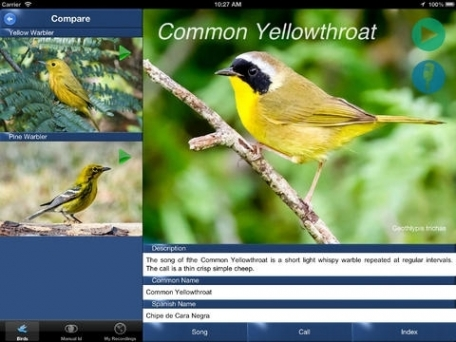 Bird Song Id USA NE Automatic Recognition and Reference - Songs and Calls of North East American Birds