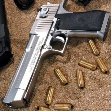 2010 A+ Gun Box