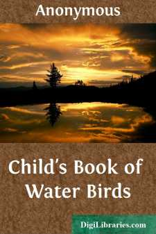 Child's Book of Water Birds