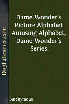 Dame Wonder's Picture Alphabet Amusing Alphabet, Dame Wonder's Series.