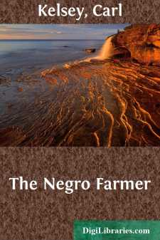 The Negro Farmer