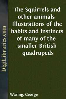 The Squirrels and other animals 
