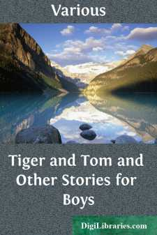 Tiger and Tom and Other Stories for Boys