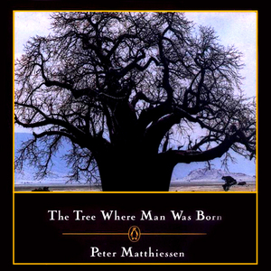 The-tree-where-man-was-born-unabridged-audiobook