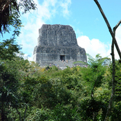 Guatemala's Tikal National Park - Animals and Plants: Audio Journeys (Unabridged) audiobook download