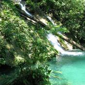 Caribbean Rainforest with FUNDAECO: Audio Journeys (Unabridged) audiobook download