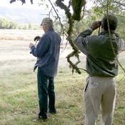 Audio Journeys: Rodman Nature Preserve, Clear Lake, California audiobook download