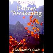 Journey of Awakening audiobook download