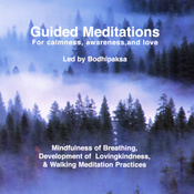 Guided Meditations: For Calmness, Awareness, and Love (Unabridged) audiobook download